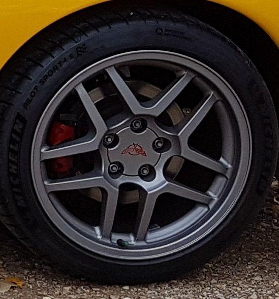 rear_nut.jpg