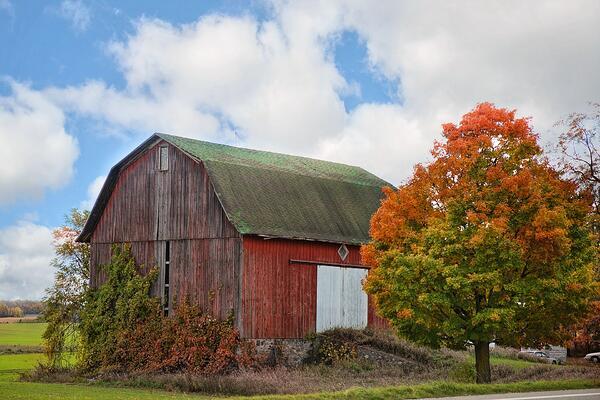 stockvault-red-barn218312.jpg