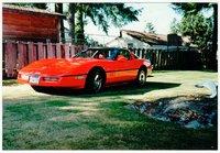 1981 Corvette -1.jpg