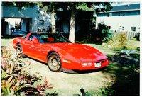 1981 Corvette - 2.jpg